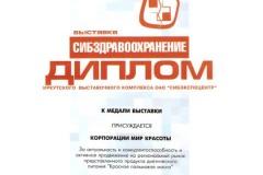 dip-irkutsk-2007_11